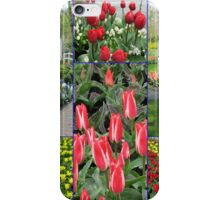Keukenhof Collage featuring Pinocchio Tulips iPhone Case/Skin