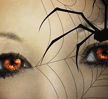 Black Widow by Carol Bleasdale