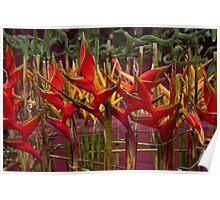 Melbourne Flower Show 2011 Poster