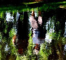 Slipstream by su2anne
