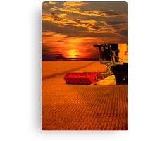 Norfolk Harvest Summer Sunset  Canvas Print