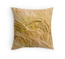 Golden Summers: Bearded Barley Throw Pillow