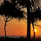 Bali sunset silhouettes by IngeHG