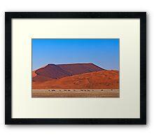 Life in the desert (II) Framed Print