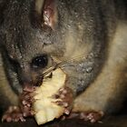 Mmmmm! Yummy Pear. by aussiebushstick