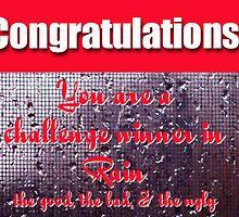 Rain challenge winner banner by vigor