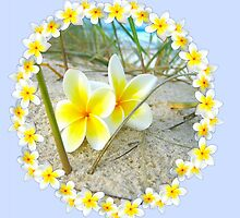 Frangipani Beach - Mother Birthday Card by judygal