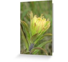 Yellow Brush Greeting Card