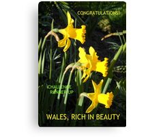 Wales Challenge Runner-up Banner Canvas Print