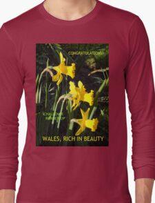 Wales Challenge Runner-up Banner Long Sleeve T-Shirt