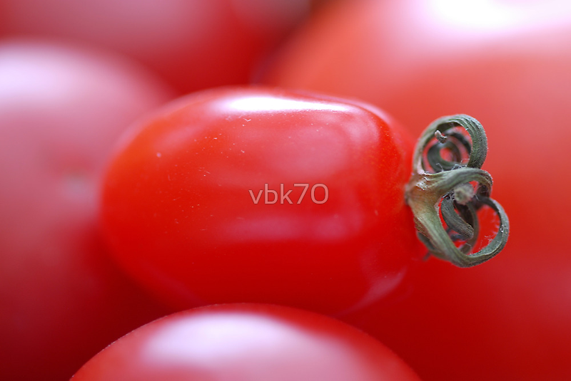 Little Tomato by vbk70