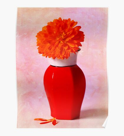 Calendula In Chinese Vase Poster