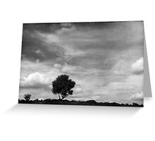 Nature in black and white XIII Greeting Card