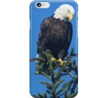 American Bald Eagle Topper iPhone Case/Skin