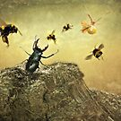 The mad Beetle ROARED.........!!!!!! by polly470