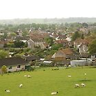 The village of Cheddar by TimLarge