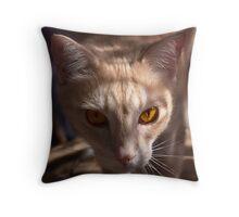 The Eyes of Raymond Throw Pillow