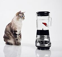 Fish Smoothie?? by Jennifer S.