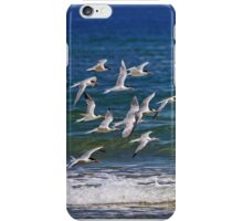 They flock iPhone Case/Skin