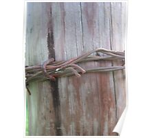 Wooden Barbed Wire  Poster