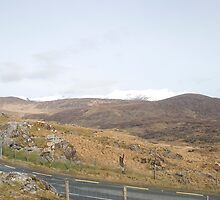 Kerry Mountains Killarney lakes in Ireland 27 by GeorgiaConroy