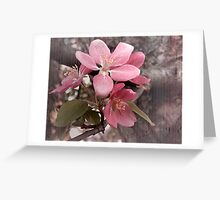 Crabapple Blossom Greeting Card