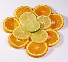 Oranges and Lemons (with a touch of lime!) by Audrey Clarke