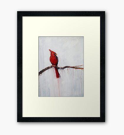 Winter Cardinal Framed Print