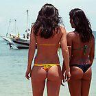 Brazilian Beauties by Gregory L. Nance