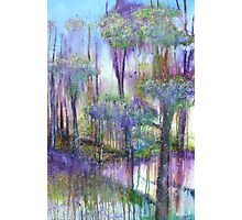 Forest Dreams Photographic Print