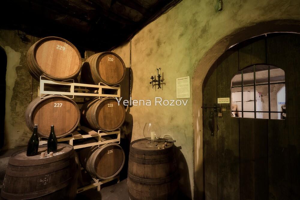 Wine Cellar  by Yelena Rozov