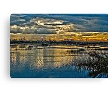 Wetlands in High Definition Resolution   Canvas Print