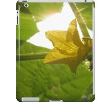 Yellow Cucumber Flower iPad Case/Skin