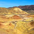Painted Hills Oregon  by Don Siebel