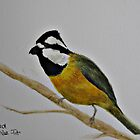 Crested Shrike-tit by JulieWickham