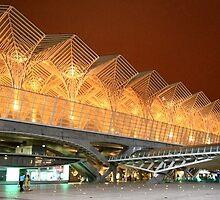 Gare do Oriente. Architecture. Lisbon.  by terezadelpilar~ art & architecture