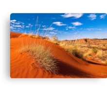 Sand Country Canvas Print