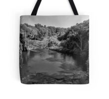 Sioux River Tote Bag