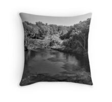 Sioux River Throw Pillow