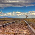 Rail to the Stars by Bill Wetmore