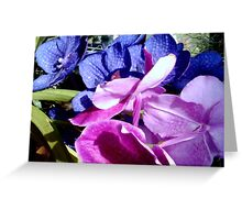 Orchids: is it a boy or a girl? Greeting Card