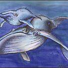 Cetacea by Kat Anderson