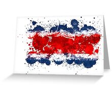 Costa Rica paint flag Greeting Card