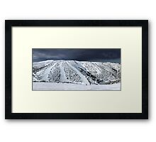 Orchard Panorama Framed Print
