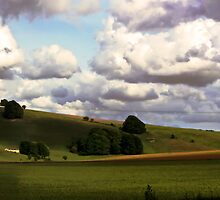 Rolling hills 2 by Doug McRae