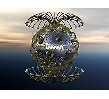Air Anemone Photographic Print