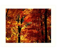 Ozark Autumn Art Print