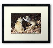 Prairie Fight Framed Print
