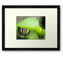 Reflection in Water droplet  Framed Print