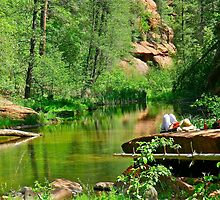A quick nap - Oak Creek Canyon by Ron Wright
